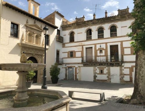 LA PROMESA INCUMPLIDA DEL PSOE PARA 2017: LA DECLARACIÓN COMO BIC DEL CONJUNTO MONUMENTAL SANTO DOMINGO – PALACIO DE LOS CADIMO